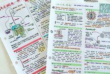 School notes