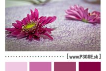 Svadobné inšpirácie / farby / Wedding Inspiration Board (Colour Palettes)