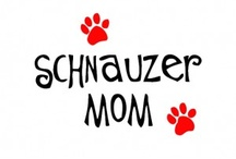 Love my schnauzers! / by Laura McCallister