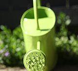Weeded Bliss #gardenweeds / Gardening tips, makeover ideas  / by Ilona's Garden