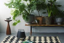 Plantes in the Home