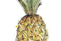 Früchte zeichnen