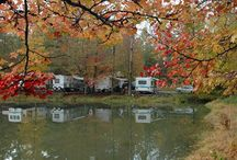 Camping / by Marci McDougald