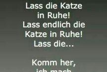 c'est drôle (mots allemands)