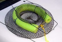 Balıkçılık ipuçları