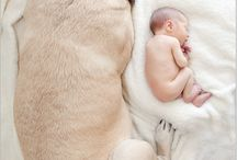 Reese's Newborn photos