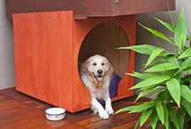 Outdoors In / How to safely bring a little of the outdoors inside without runing your floors.