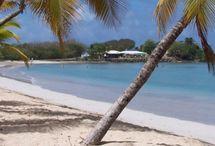 Martinique randonnée