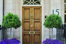 wejście. drzwi wejściowe.