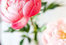 Beautiful / by Jami Leslie