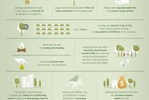 infografiche verdi