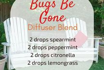 Bugs Be Gone