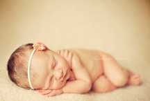 Newborn Photography  / by Kimberly Bunt
