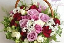 Basket of tri-color roses