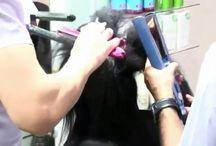 saç bakım