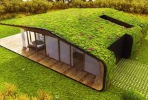 zelena střecha