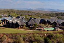 Magical videos / Sneak previews of the  breathtaking Zulu Nyala properties  / by Zulu Nyala