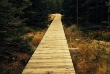 Landscape architecture & views & design / Landscape architecture
