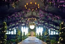 Enchanting / by viva bella events