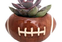Sports Planters - Great Gift! /  Ceramic sports-themed planters with a live succulent plant