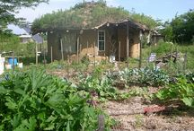 Tiny Homes / I love the idea of having a tiny house as a retreat...somewhere to go and dream.