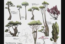 生物:植物