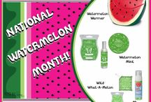 Scentsy / Scentsy consultant