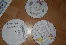 Oktatás / Saját készítésű oktató tábláim