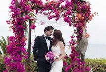 CHUPPAH - Destination Wedding
