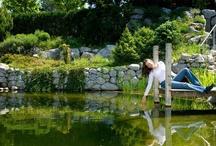 Gartentraum - Traumgarten / #Gartentraum - #Traumgarten? Ich habe tausend Ideen zur #Gartenplanung im Kopf. Ihr #Gartenbauarchtitekt in #Jüchen www.ericclassen.de