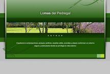 Lomas del Pedregal / http://lomasdelpedregalresidencial.com/ Desarrollado 100% en Flash, con manejo de video y 3D