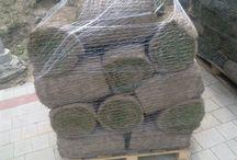 Trawa z rolki / Trawnik z rolki jest alternatywą szybkiego zagospodarowania terenów zielonych. Po dokładnym przygotowaniu podłoża, miejsc na których trawa ma rosnąć układana jest trawa z rolki w ciągu paru godzin. Już na drugi dzień można się cieszyć zielonym dywanem w ogrodzie. http://terenyzielone.wordpress.com/2014/06/18/trawnik-z-rolki/