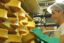 ELABORACIÓN DE QUESOS / Elaboracion de queso, fabricacion,