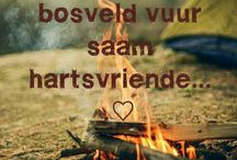 ♡Bosveld♡