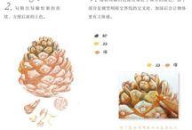 illustration_guide