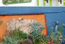 Jardinagem em recipientes