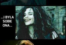 Harry Pota meme