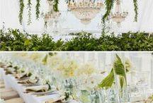 Svatební výzdoba - zelená