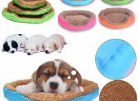 Pet Supplies / Great range of Pet Supplies for all your pet needs.