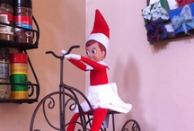 Adventures with Elf on the Shelf / The elf adventures / by Stephanie Brooks Downing