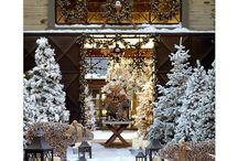 Christmas with the Watkins / by Jenna Watkins