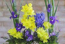 arreglo con iris