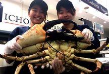 Nicholas Seafood Traders - Sydney Fish Market