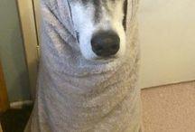 После ванны