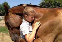 Human animal love