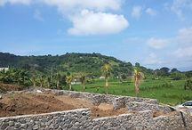 Tanah Dijual di Bali / Tanah dijual di Bali untuk bangun rumah sekaligus investasi, lokasi tersbar diseluruh pelosok Bali