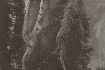 Legend about BIGFOOT / Genetic testing confirms the legendary Bigfoot is a human relative that arose some 15,000 years ago