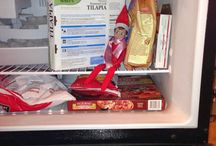 Elf on a Shelf / by Kimberly O'Connell Powers