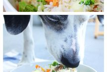 Kelley and Cricket Doggie Dishes / Grain-Free dog food and treat recipes
