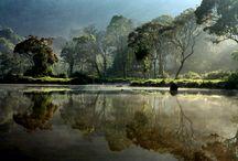 capture / by Michael De Graaf